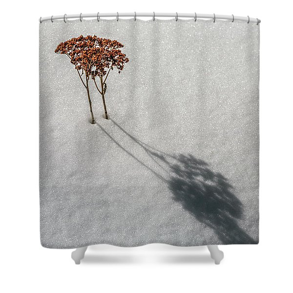 Long Shadow Of Winter Shower Curtain