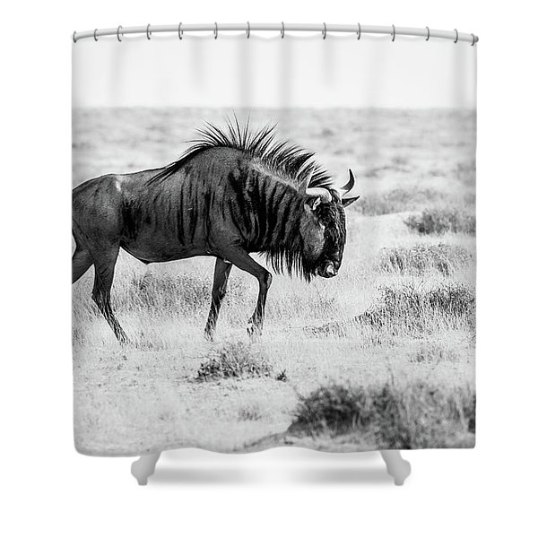 Long Walk Shower Curtain