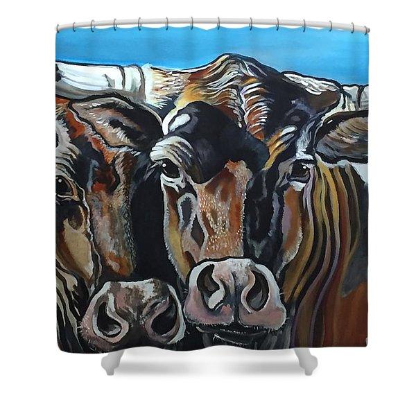 Longhorns, Interrupted Shower Curtain
