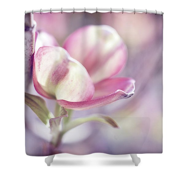 Shower Curtain featuring the photograph Love Simply by Michelle Wermuth
