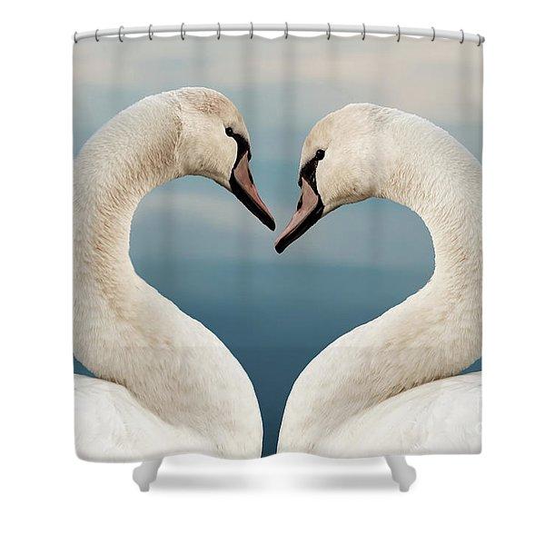 Love Swans Shower Curtain