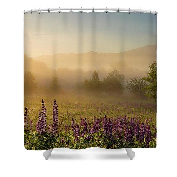 Lupine In The Fog, Sugar Hill, Nh Shower Curtain