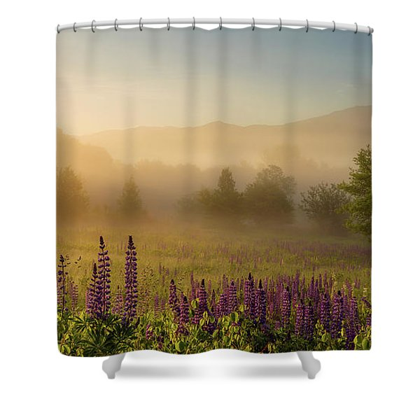 Shower Curtain featuring the photograph Lupine In The Fog, Sugar Hill, Nh by Jeff Sinon
