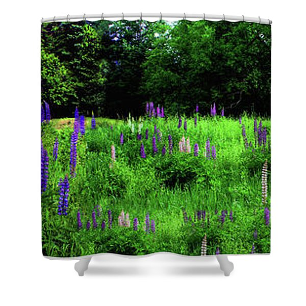 Shower Curtain featuring the photograph Lupine Panorama by Wayne King