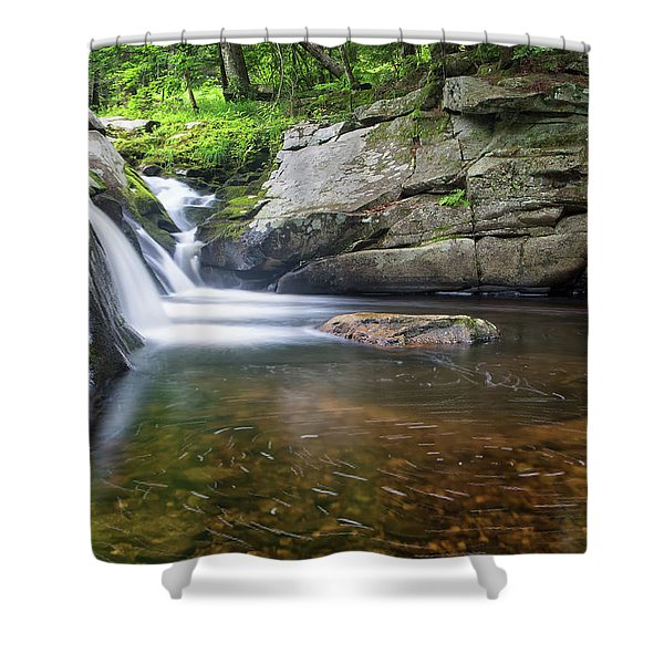 Mad River Falls Shower Curtain