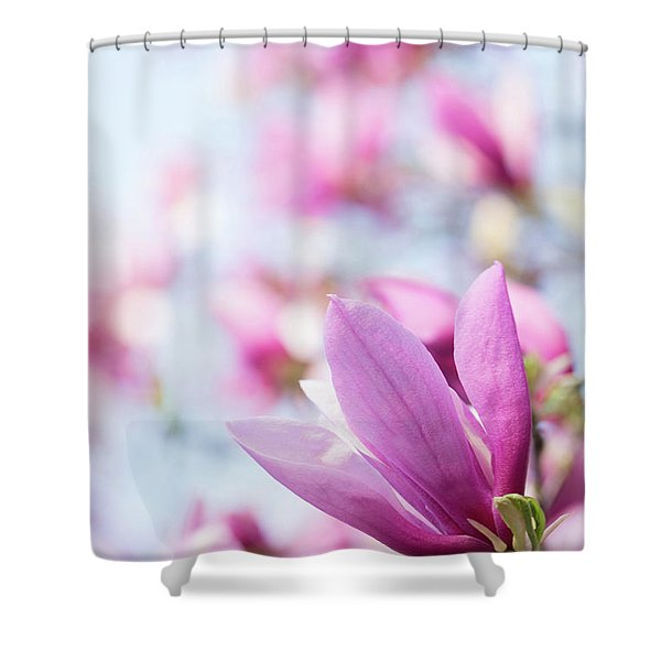 Shower Curtain featuring the photograph Magenta Magnolias by Emily Johnson