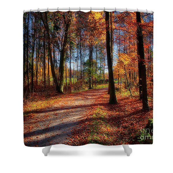 Magic Of The Forest Shower Curtain