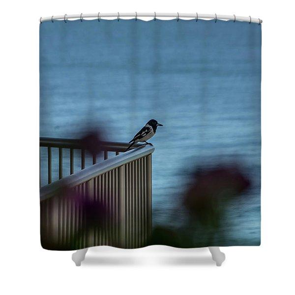 Magpie Bird Shower Curtain
