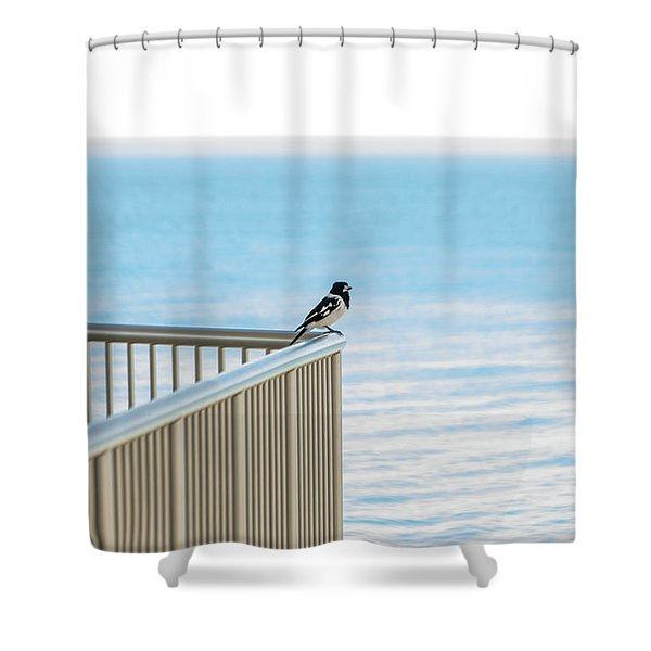 Magpie In Waiting Shower Curtain