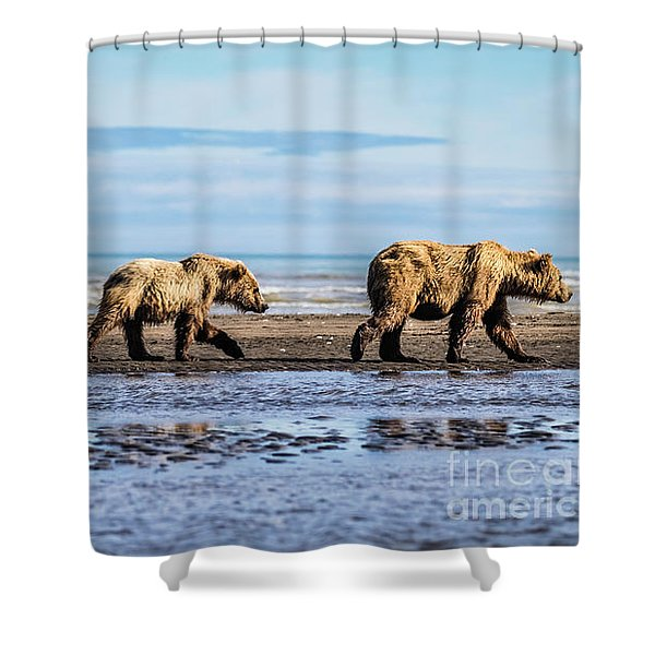 Mama Bear And Her Two Cubs On The Beach. Shower Curtain