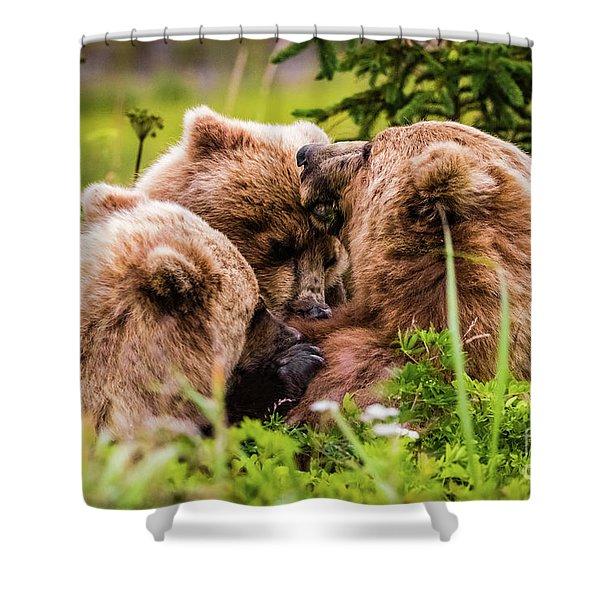 Mama Bear Nursing Her Two Cubs, Lake Clark National Park, Alaska Shower Curtain