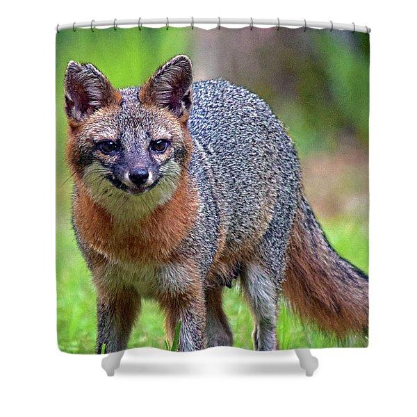 Mama Fox Shower Curtain