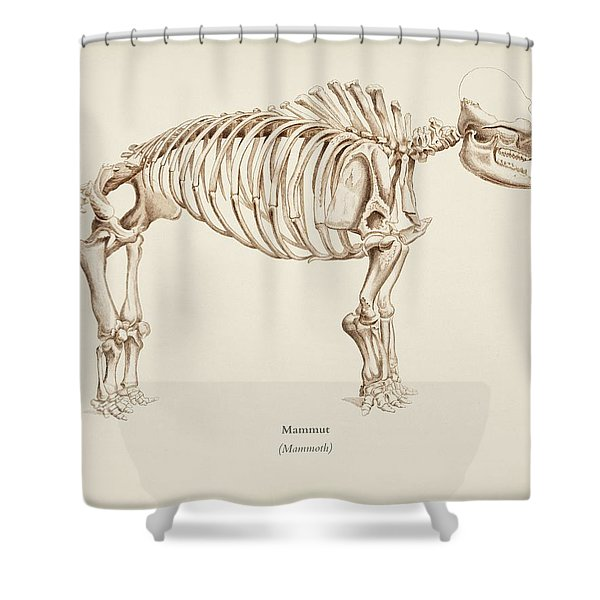 Mamoth  Mammut  Illustrated By Charles Dessalines D' Orbigny  1806-1876  Shower Curtain
