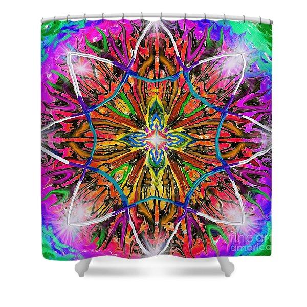 Mandala 12 11 2018 Shower Curtain