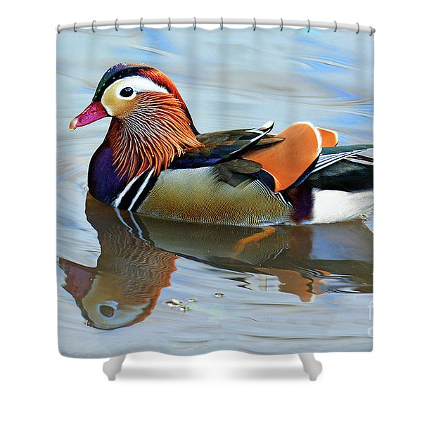 Mandarin Duck Central Park 1 Shower Curtain