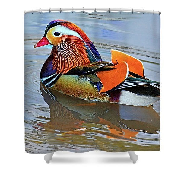 Mandarin Duck Central Park-12 Shower Curtain