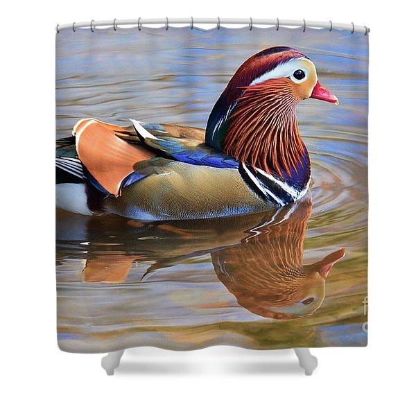 Mandarin Duck Central Park 2 Shower Curtain