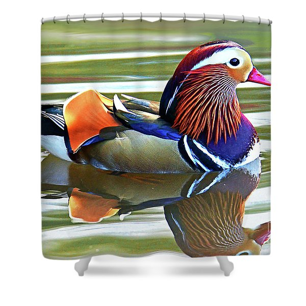 Mandarin Duck- Central Park 7 Shower Curtain