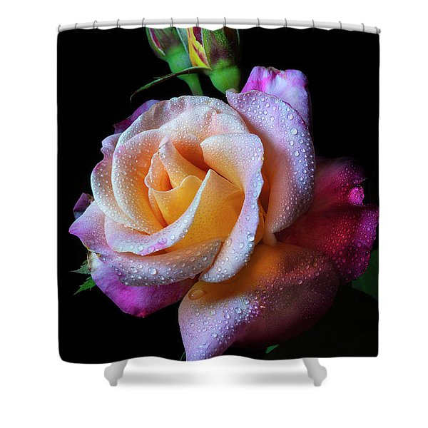 Mardi Gras Rose Portrait Shower Curtain