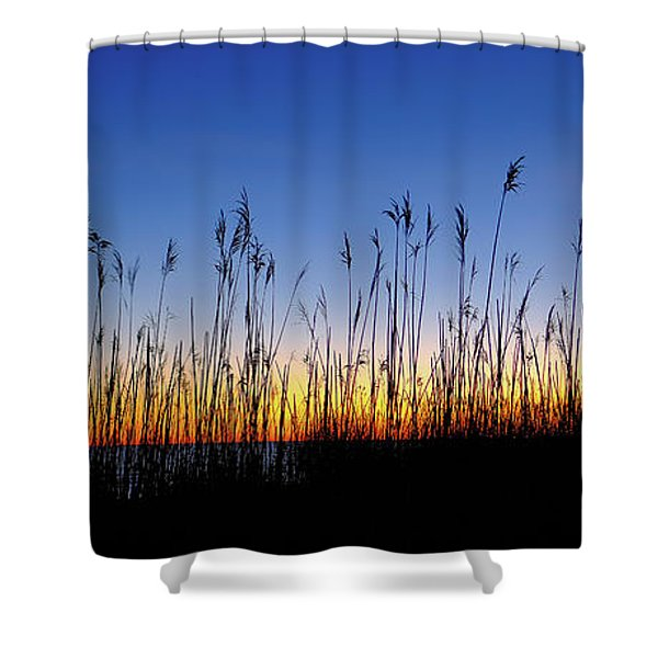 Marsh Grass Silhouette  Shower Curtain