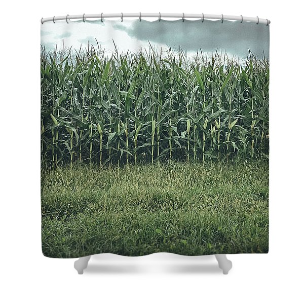 Maize Field Shower Curtain