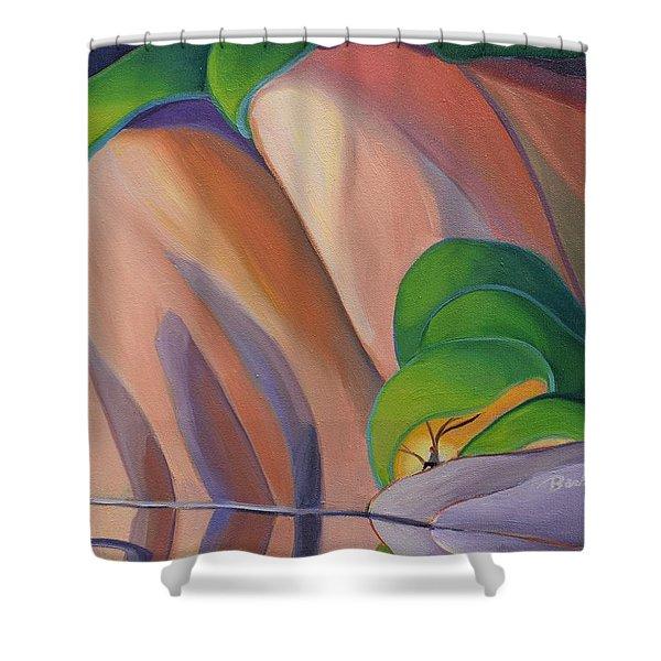 Mazinaw Rock II Shower Curtain