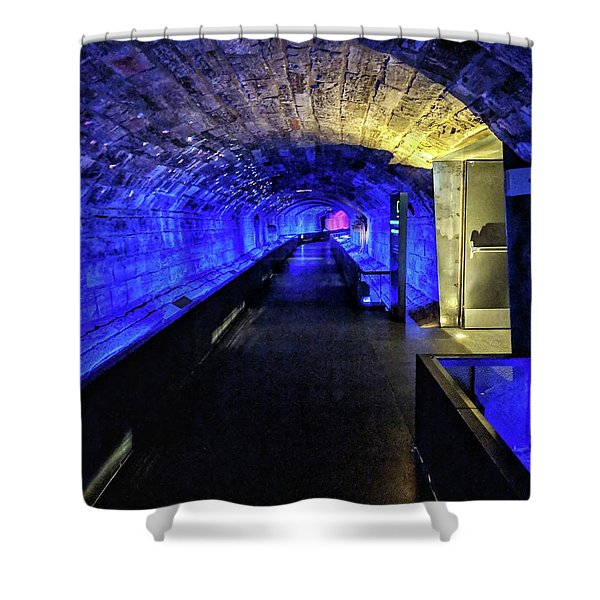 Memory Collector Shower Curtain