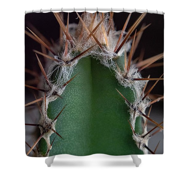 Shower Curtain featuring the photograph Mini Cactus Up Close by Scott Lyons