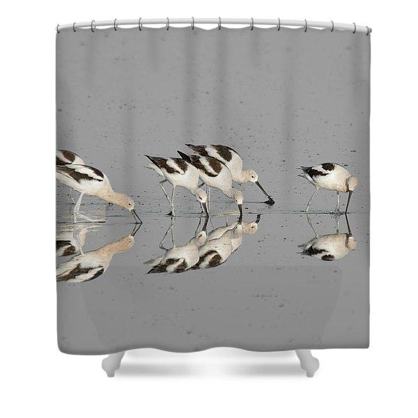 Mirror Image Shower Curtain