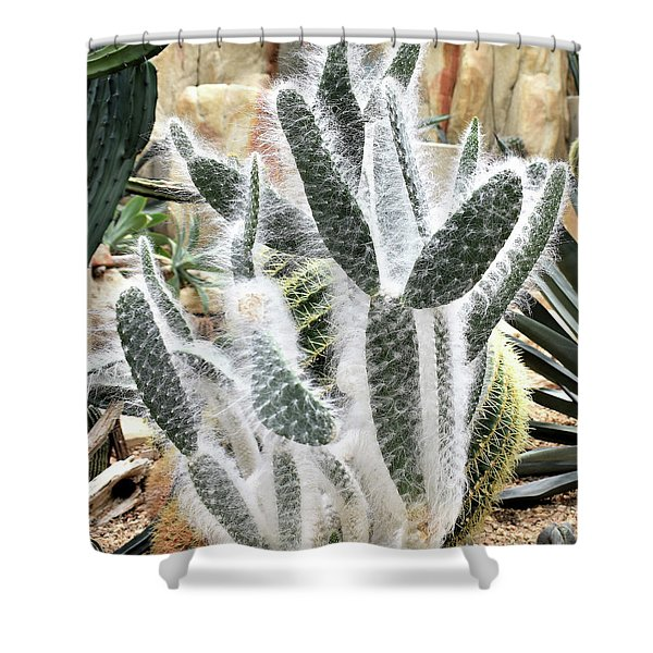 Mojave Prickly Pear Shower Curtain