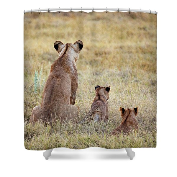 Mom And Cubs Shower Curtain