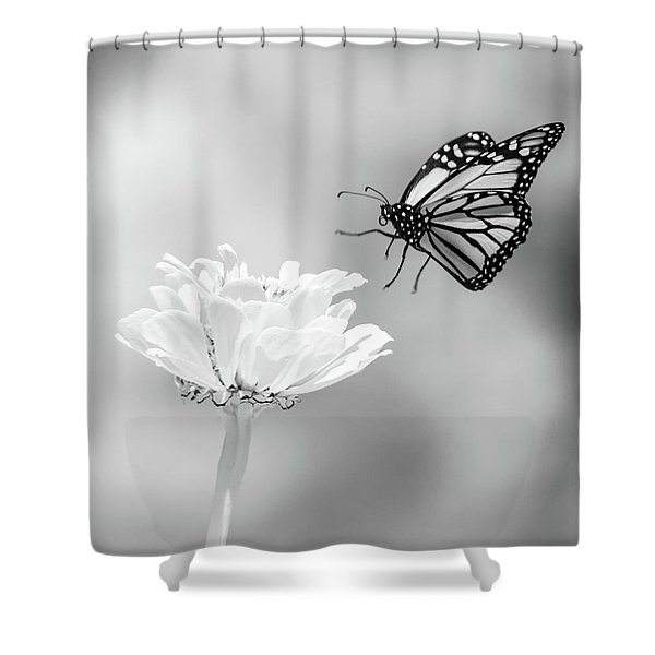 Monarch In Infrared 6 Shower Curtain
