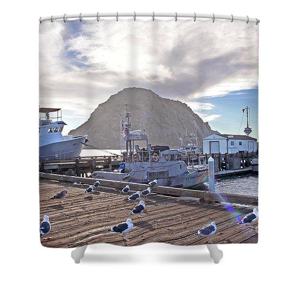 Morro Bay Harbor Shower Curtain