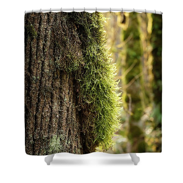 Shower Curtain featuring the photograph Moss On Bark by Whitney Goodey