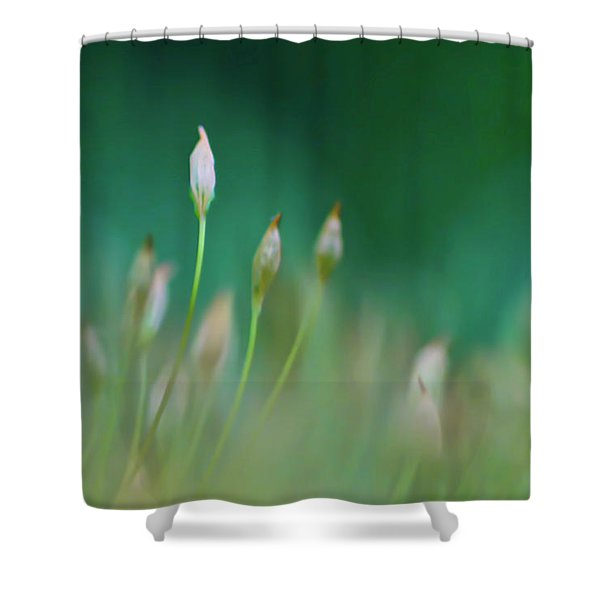 Shower Curtain featuring the photograph Moss Spores by Meta Gatschenberger