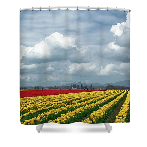Mount Vernon Tulip Rows Shower Curtain