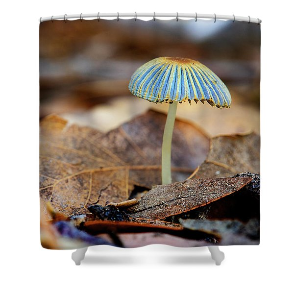 Mushroom Under The Oak Tree Shower Curtain