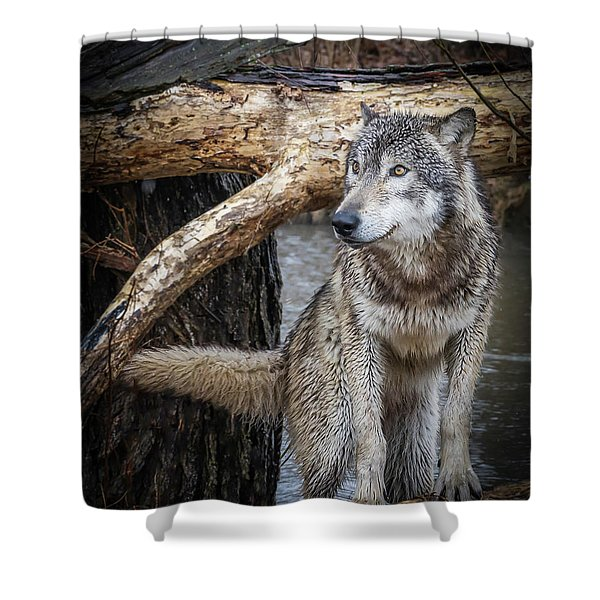 My Favorite Pose Shower Curtain