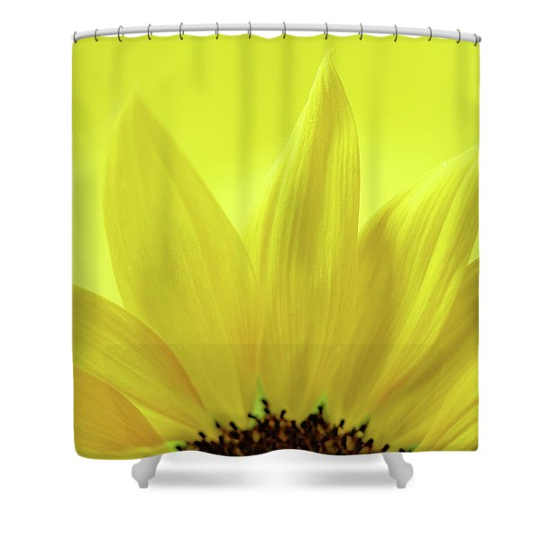 Shower Curtain featuring the photograph My Sunshine by Michelle Wermuth