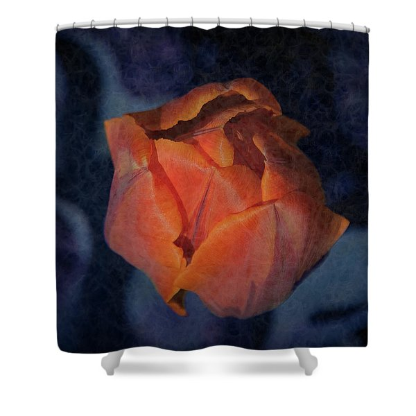 Mysterious Promise Shower Curtain