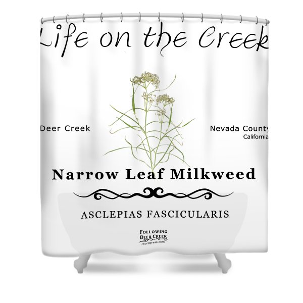 Narrow Leaf Milkweed Shower Curtain