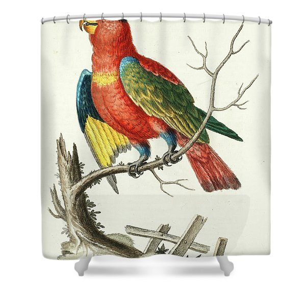 Natural History Of Uncommon Birds Shower Curtain