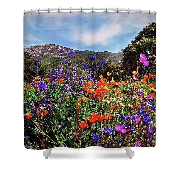 Nature's Bouquet  Shower Curtain