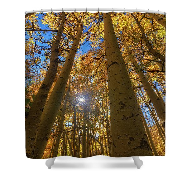 Natures Gold Shower Curtain