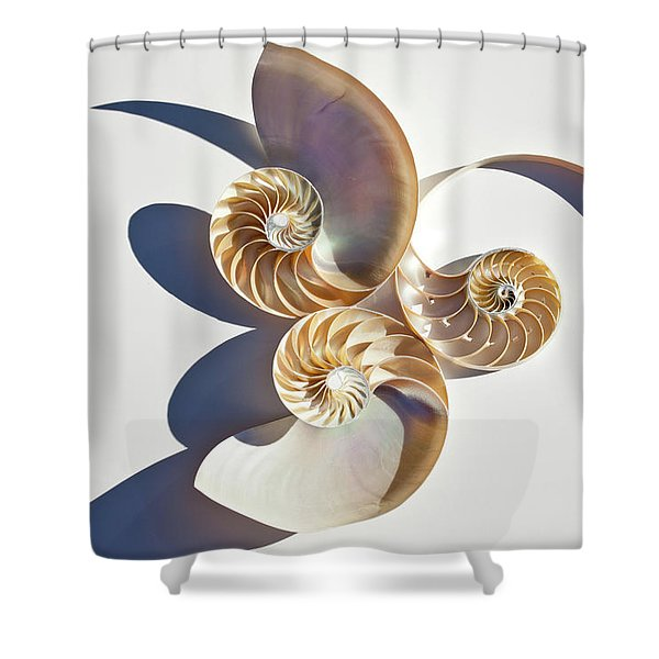 Nautilus 0425 Shower Curtain