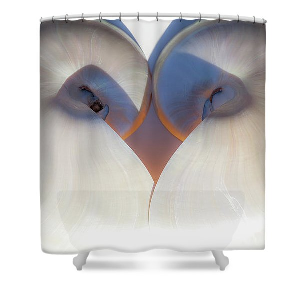 Nautilus 0432 Shower Curtain