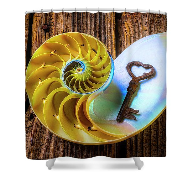 Nautilus Shell And Old Key Shower Curtain