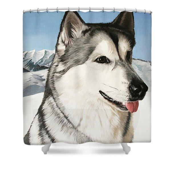 Nayuk Alaska Malamute Shower Curtain