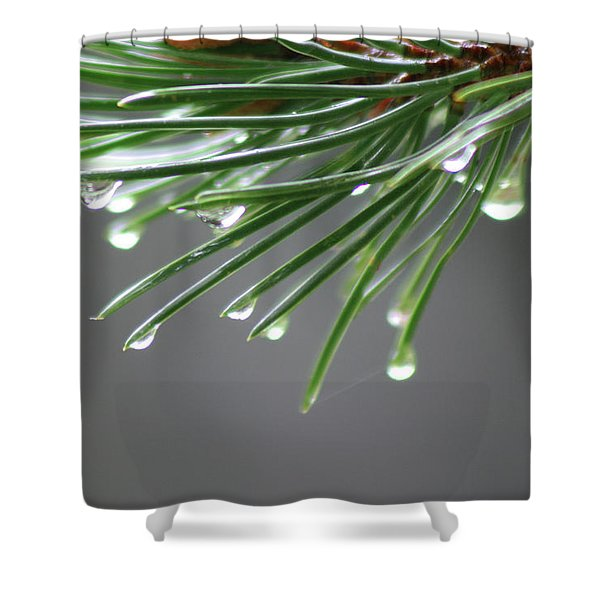 Needles In Fog Shower Curtain
