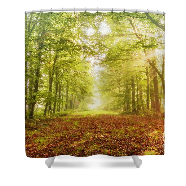 Neither Summer Nor Winter But Autumn Light Shower Curtain